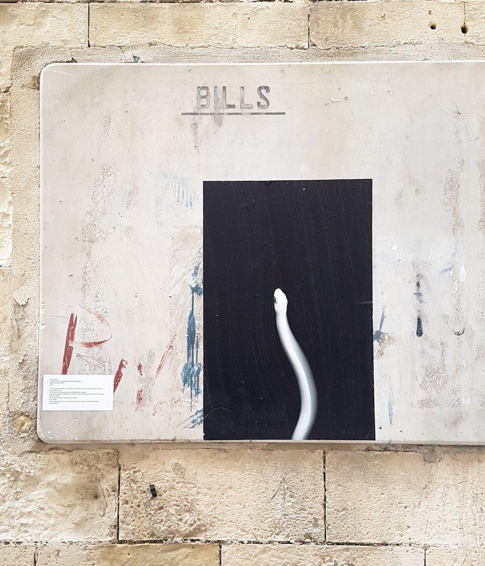 SnakeShow_Fragmenta-Malta_PicBettinaHutschek_98